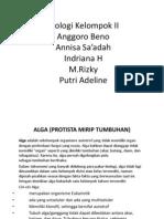 Power Point Protista