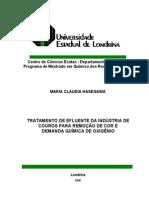 2009-TRATAMENTO DE EFLUENTE DA INDÚSTRIA DE