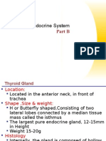 The Endocrine System Part 2