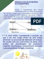 CIencias Do Ambiente CAP 7 e 8ANA PAULA
