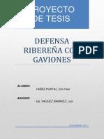 Defensa Ribereña con Gaviones