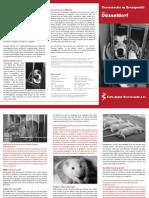 Tierversuche im Brennpunkt - Teil 06 - Düsseldorf - aerzte-gegen-tierversuche.de - duesseldorf