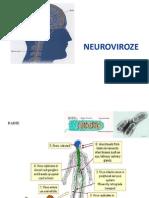 Neuro Vi Roze 2013