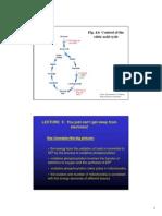 Biochemistry Lect 5 2011 Colour 2 Slides Per Page