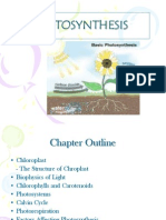 Chap 6 (Photosynthesis)