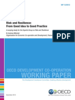 Risk and Resilience in Global Development - From Good Idea to Practice