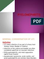 pylonephritis-130520160226-phpapp02