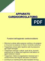 Cardiocircolatorio Iy