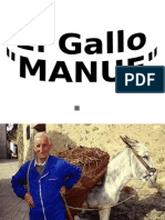 Gallo Manue