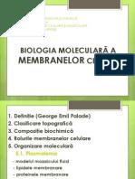 Structura membranelor
