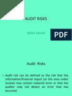 Audit Risks