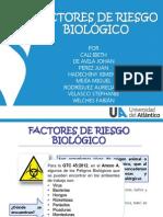 RiesgosBiológicos2013