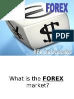 FOREX IMS