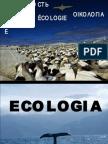 Apostila Virtual de Ecologia