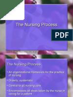3.Nursing Process Upd