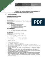 119254295 Plan de Trabajo de Saanee de Red Ubinas