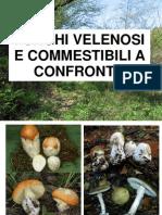 Funghi Velenosi e Commestibili