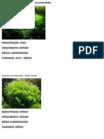 PLANTAS MOITAS