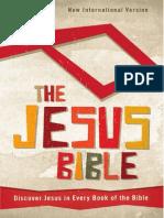 The Jesus Bible, NIV