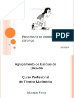 Processos controlo esforco.pptx