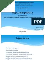 s014.Kursovoy