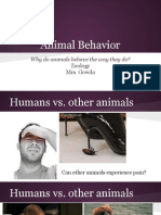 animal behavior pdf