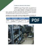 SEGURIDAD E HIGIENE INDUSTRIAL tarea 2 (1).docx