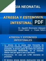 Atresia y Estenosis Texto i