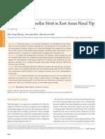 L-Shaped Columellar Strut in Asian Nose(Asian rhinoplasty)