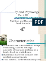D- Anatomy and Physiology- Part III