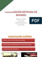 Inseminacion Artificial en Bovinos Parte 1