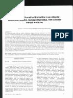 Estomatite Ulcerativa Em Golfinho