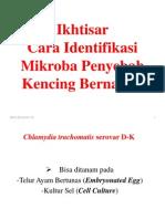 Ikhtisar Cara Identifikasi Mikroba Penyebab Kencing Bernanah