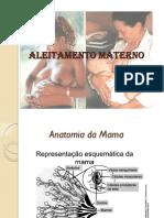 ALEITAMENTO MATERNO - LICCA