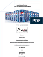 Pepsi Brand Equity Measurement