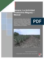 Oaxaca Mezcal