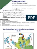 C4 Antibiotice, Familii, Germeni Rezistenti