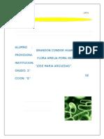 51618549-MICROORGANISMOS