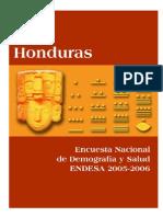 Informe ENDESA 2005-2006