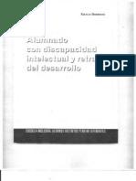 7. Alumnado Con Discapacidad Intelectual y Retraso Del Desarrollo