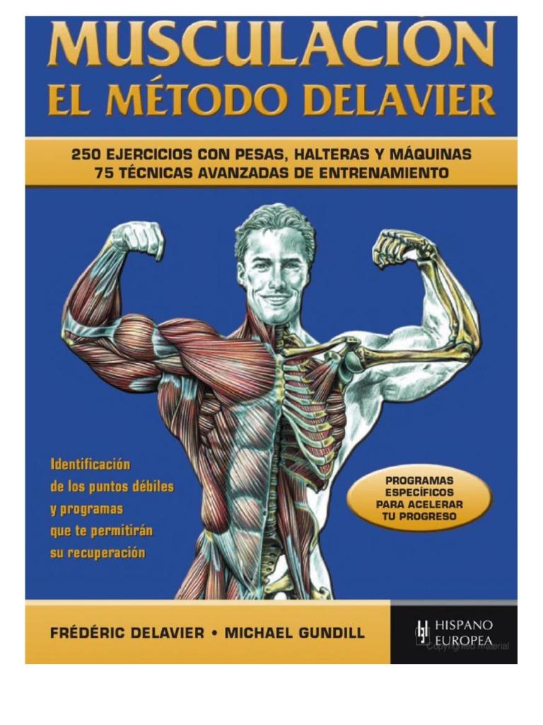 Atractivo Delavier Anatomía Entrenamiento De Fuerza Inspiración ...