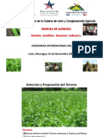 Cultivo de ajonjolí.pdf