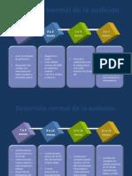 Desarrollo normal de la audición