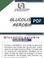 Glucolisis aerobia (1)
