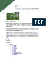 Futebol Gaelico