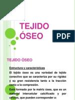 Tejido Oseo