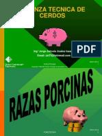 Crianza Tecnica de Cerdos