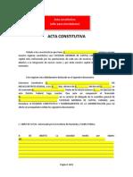 Acta Constitutiva (Simuladores)