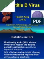 1hepatitis(HBV)07