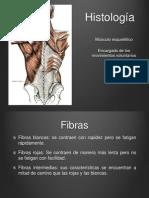 Músculos Histología.